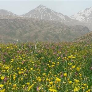 تور عشایر بختیاری شهرکرد کوهرنگ